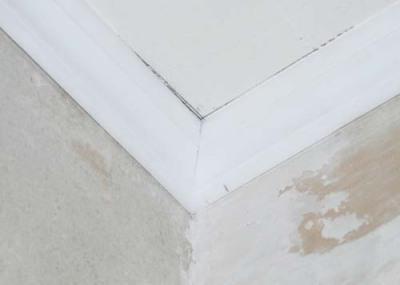 как правильно вырезать внешний угол на потолочном плинтусе