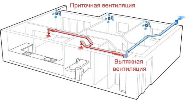 устройство вентиляции в подвалеодвале