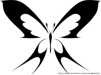 Трафарет бабочки для стены