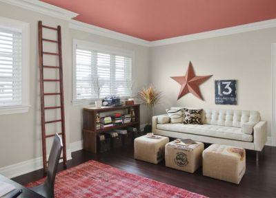 варианты окраски потолка